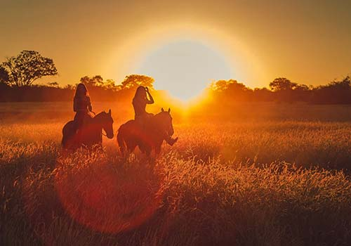 Sunset-horse-trail-Web-T20